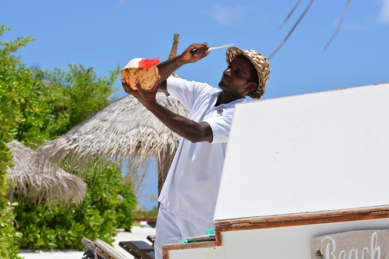 Kokosnüsse auf den Malediven
