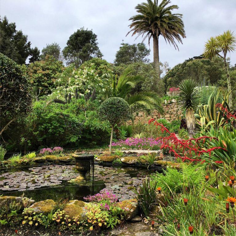 Abbey Garden, Tresco, Isles of Scilly