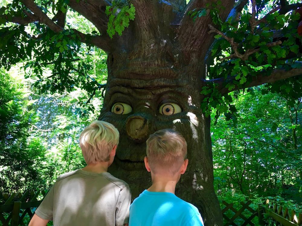 Märchenbaum, Märchenwald im Isartal