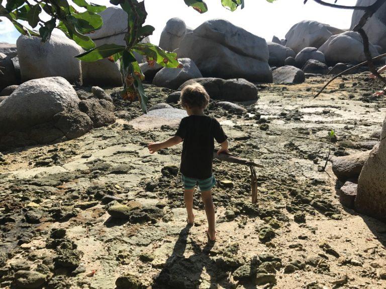 Inselumrundung Nikoi