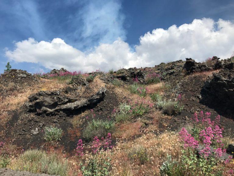 Durch Vulkangebiet